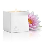 Jimmy Jane Lotus candle